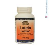 Лутеин, Natural Factors, 40 мг, 60 софтгел капсули